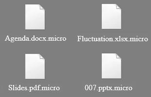 .micro Dateien