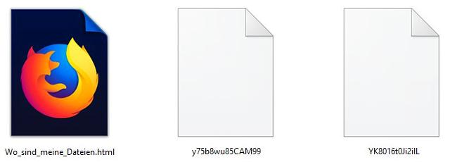 Ordinypt Ransomware Dateien